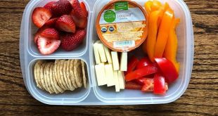 bell pepper + crackers + cheese slices + hummus for dipping + strawberries Easy...